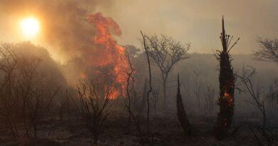Incendios en Córdoba: ya no quedan focos activos en el norte provincial